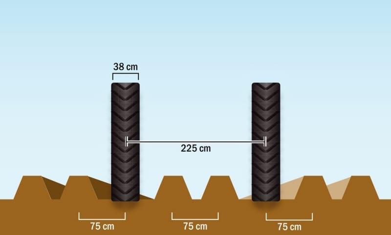 225cm